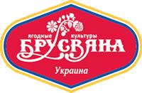 Brusvyana_Logo
